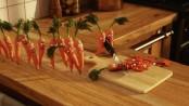 carrotsfunny